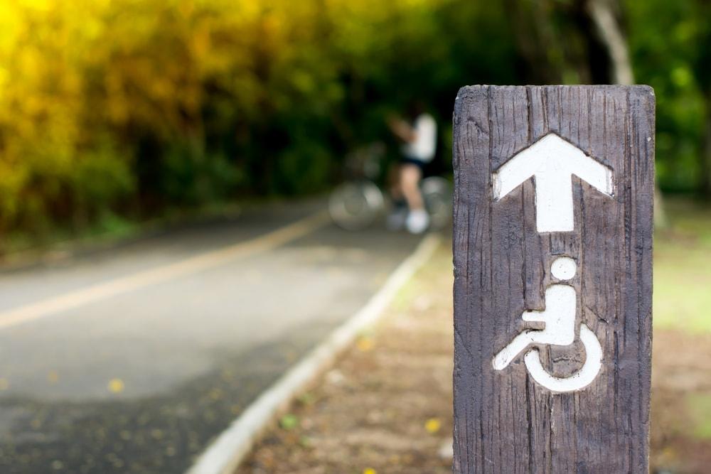 парк велосипедная зона инвалиды