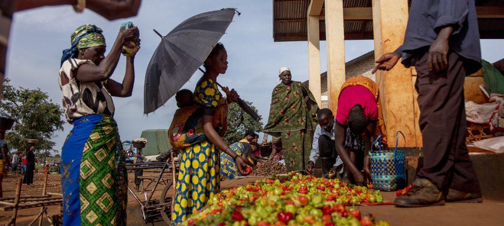 Беженцы из Бурунди и ДРК в Танзании